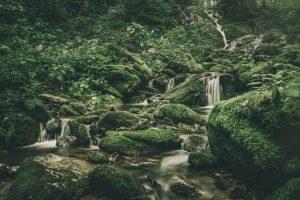 Little Bird Falls-Green Creek Gully