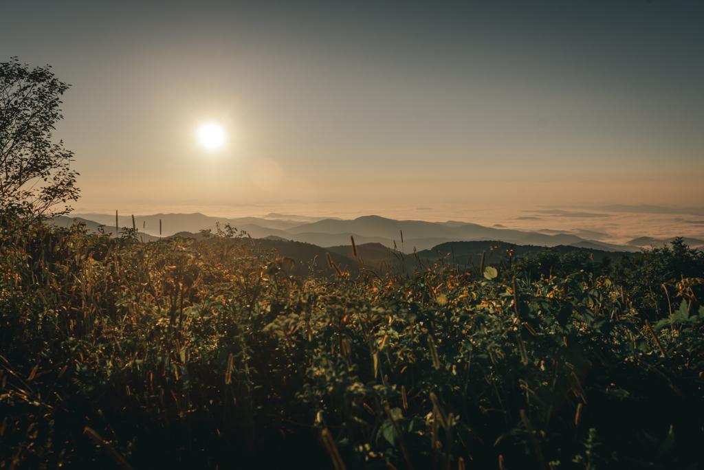 Black Balsam Knob at Sunrise-Sabrina L Greene Photography