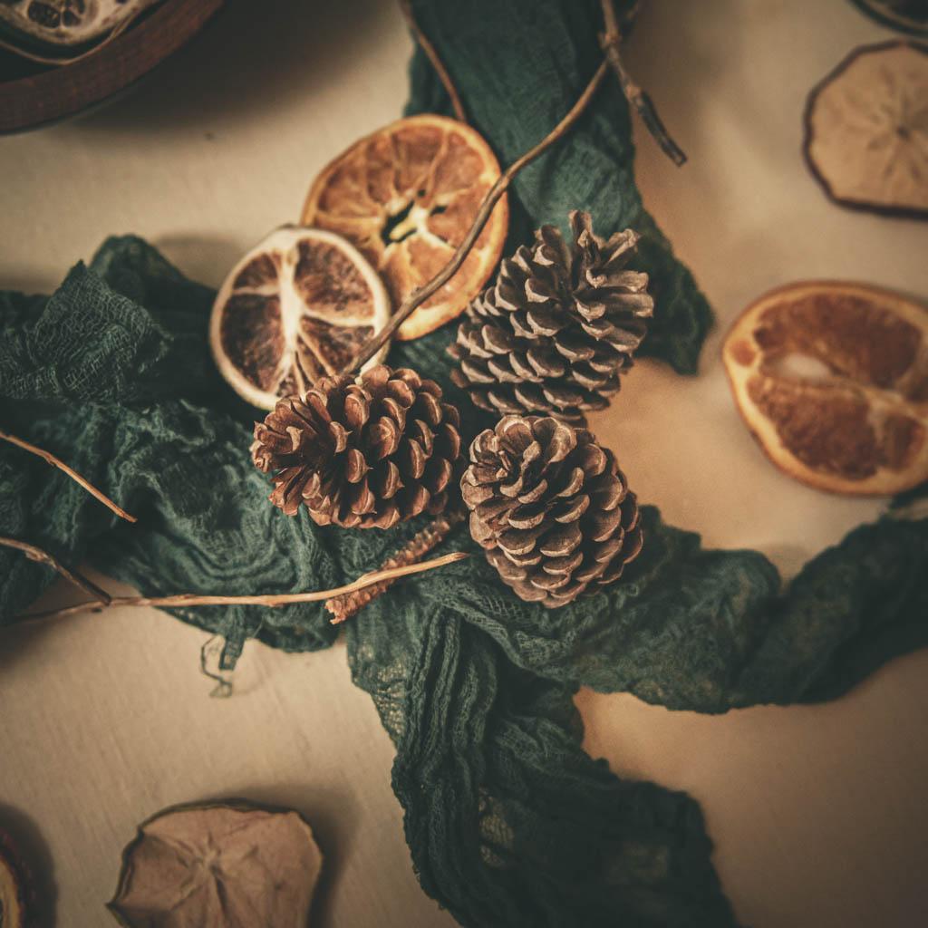 Christmas Dried Fruit Bowl Journal Photographer Sabrina L Greene Photography-3